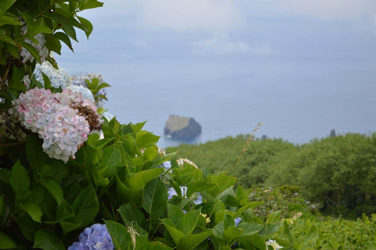 The Azores |Ponta Delgada| Saõ MIguel | Where are the Azores