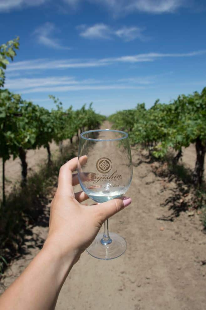 The Sunnyslope Wine Trail: Exploring Boise's Wine Country