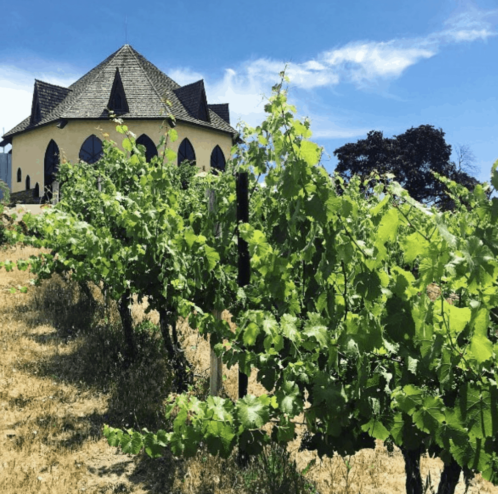 What to expect on the Sunnyslope wine trail outside of Boise, Idaho, in Caldwell, Idaho. Ste Chapelle Winery