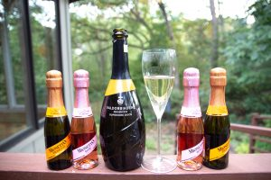3 Types of Prosecco with Prosecco Mionetto