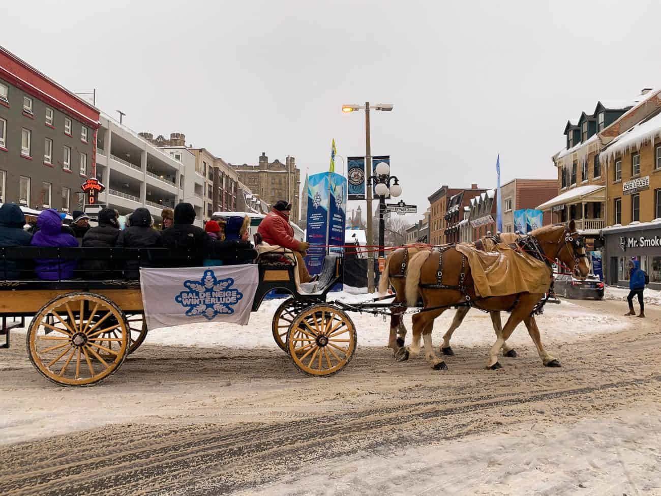 One of the modes of transportation to get around Winterlude Canada in Ottawa is to be pulled by horses