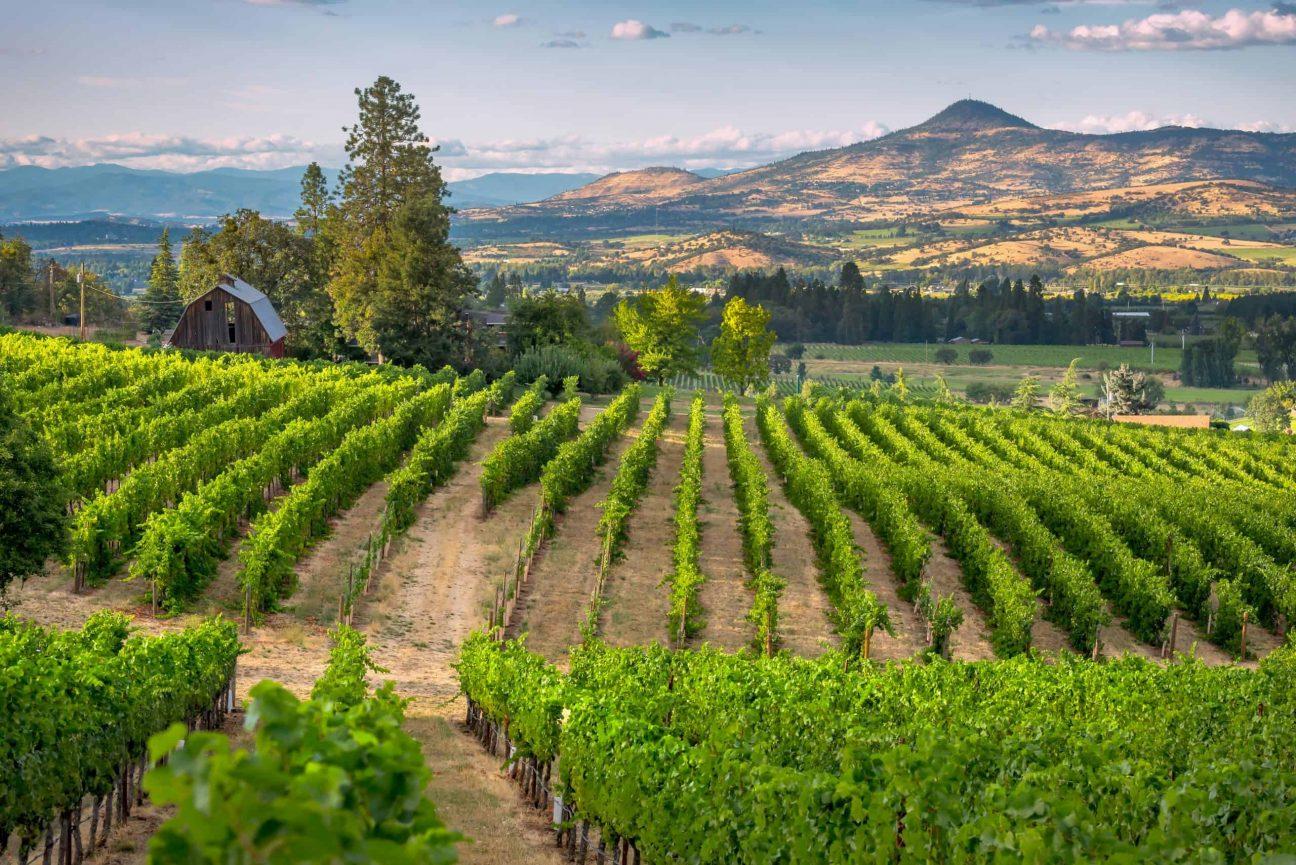 other wine regions of Oregon
